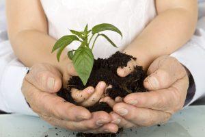 Elköteleztük magunkat a környezetterhelés és az ökológiai lábnyomunk csökkentése mellett.